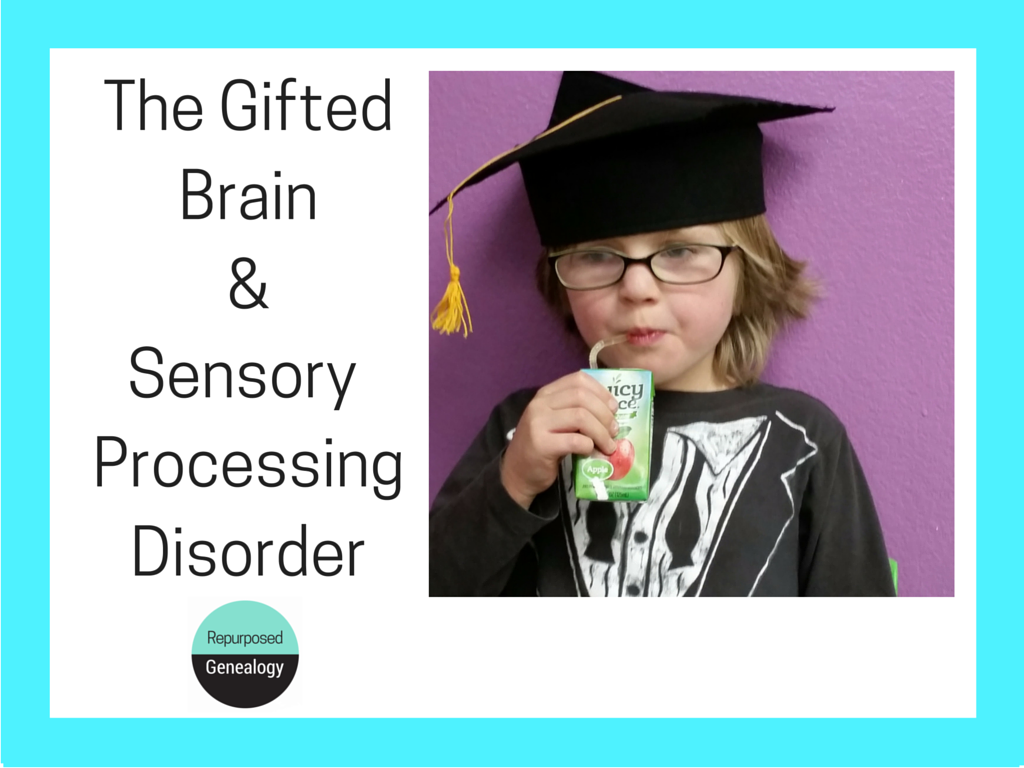 The Gifted Brain & Sensory Processing Disorder (1)